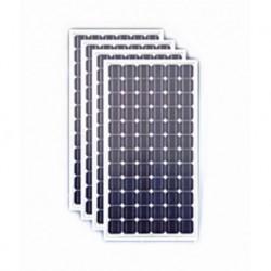 Sukam Solar Panel 100 Solar Panels